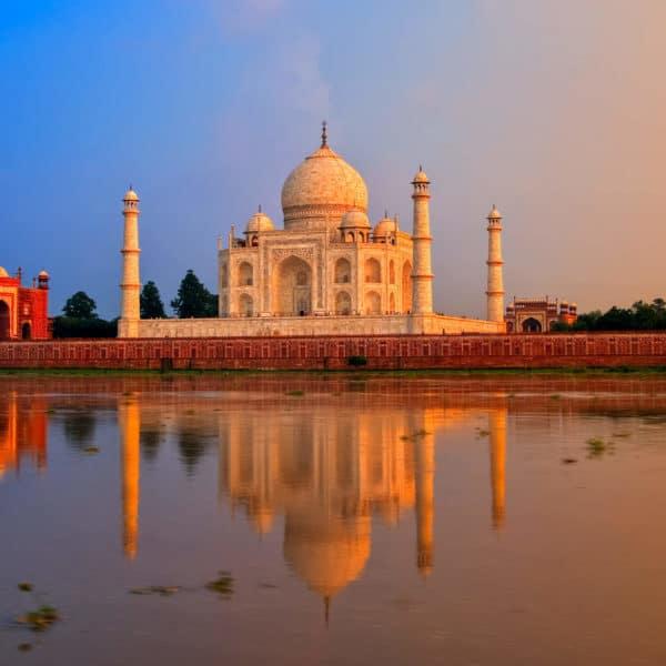 india reis