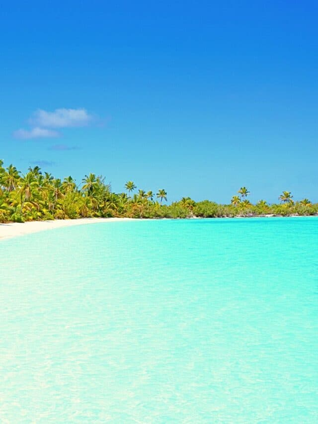 Top 10 Exotic Beaches in Andaman Islands